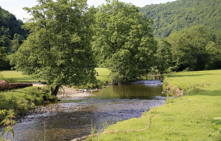 River The Retreat Romansleigh Park