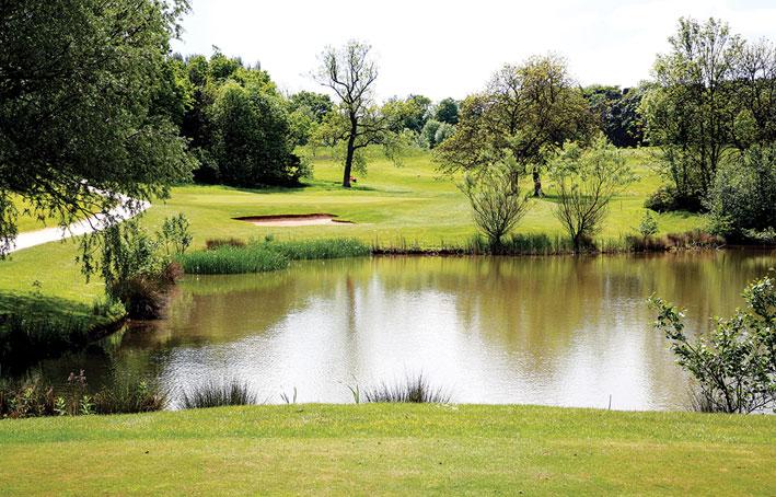 Kennewick Park Pond